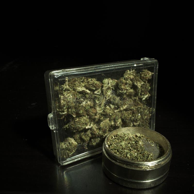 Medische & Recreatieve Marihuana stock foto's