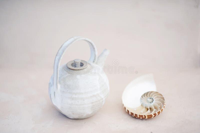 Meditação da concha do mar do bule e do nautilus imagem de stock royalty free