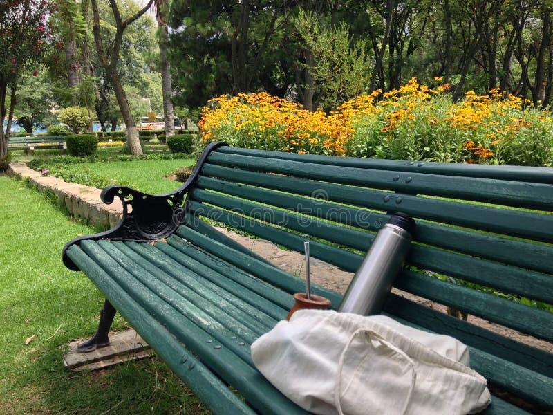 Meditación en un parque fotos de archivo