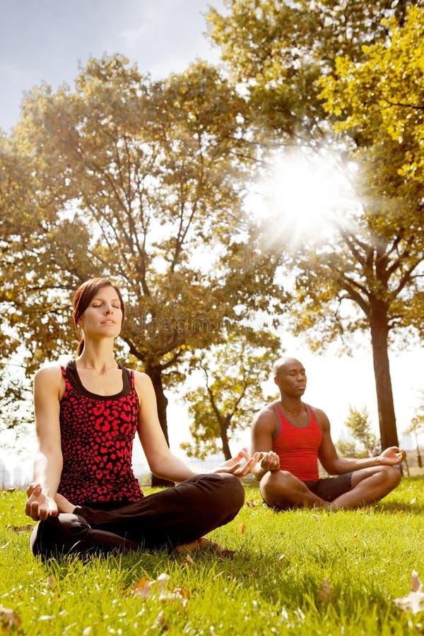 Download Meditation stock photo. Image of pose, meditate, happy - 11664148