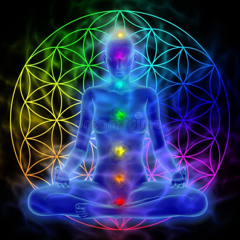 Meditation - blomma av liv vektor illustrationer
