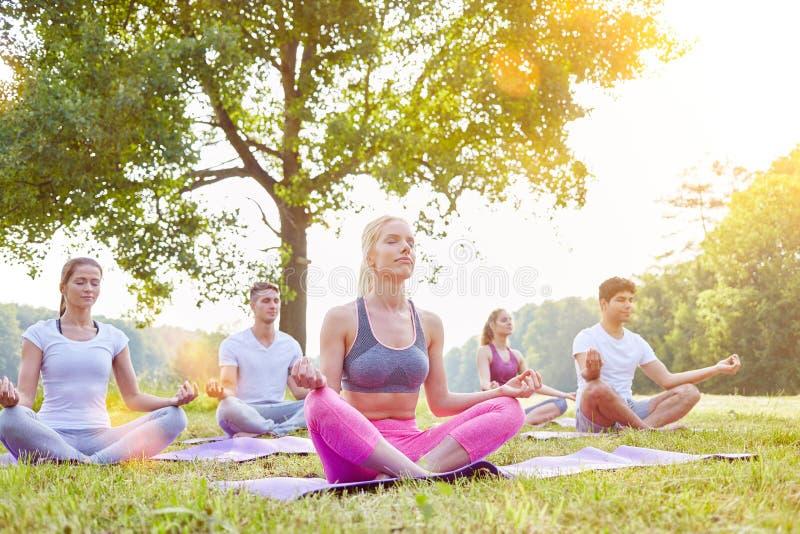 Meditation in der Yogagruppe im Sommer lizenzfreie stockbilder