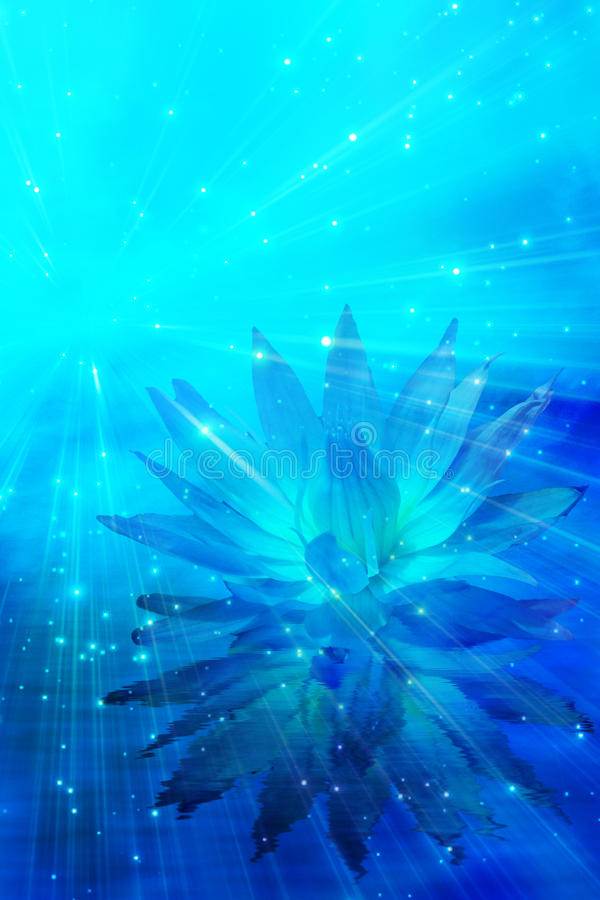 Free Meditation Flower Abstract Stock Photography - 9895132