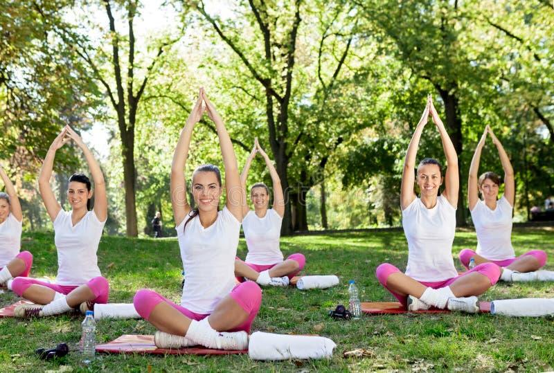 Download Meditation group in park stock image. Image of park, pink - 30944455