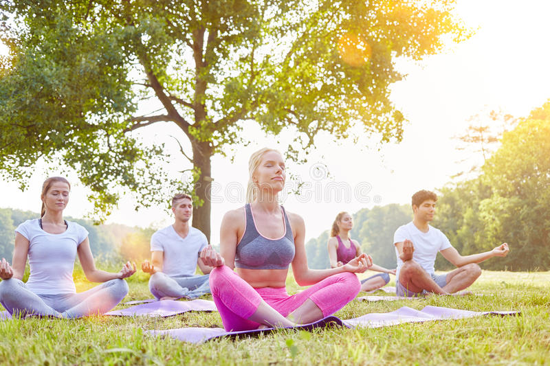 Meditation in yoga group in summer royalty free stock images