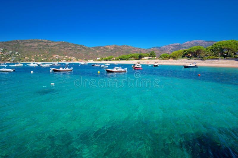 Mediteranian Corsica wyspa z sosnami, piaskowatą plażą, tourquise jasnego wodą i yach, zdjęcia royalty free