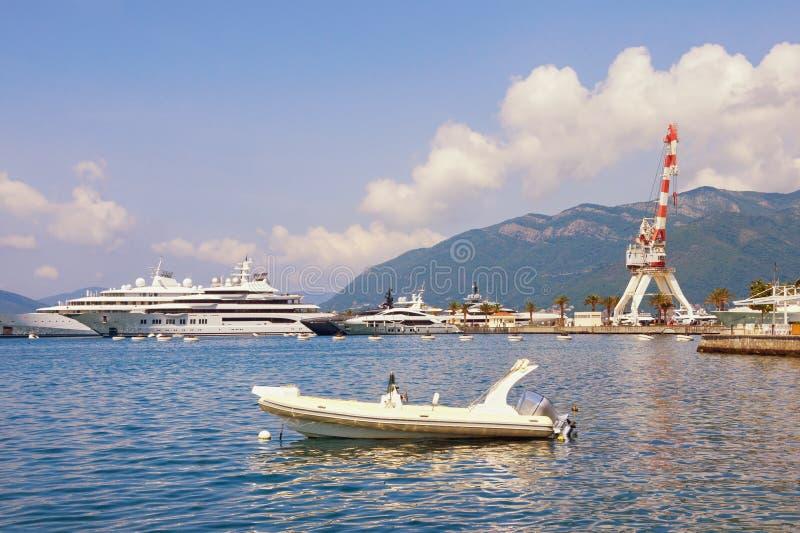 Mediterrane haven Montenegro, Baai van Kotor, Tivat, mening van jachtjachthaven van Porto Montenegro stock afbeelding