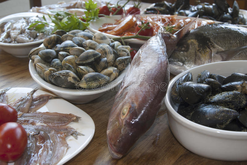 Mediterranean bluefish. Fresh bluefish: healthy raw fish mixed stock images