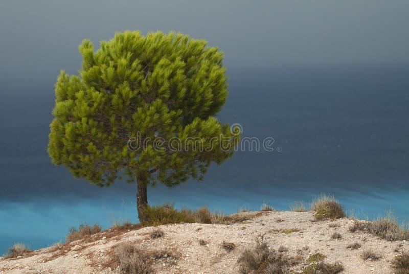 Download Mediterranean landscape stock photo. Image of greece - 11365524