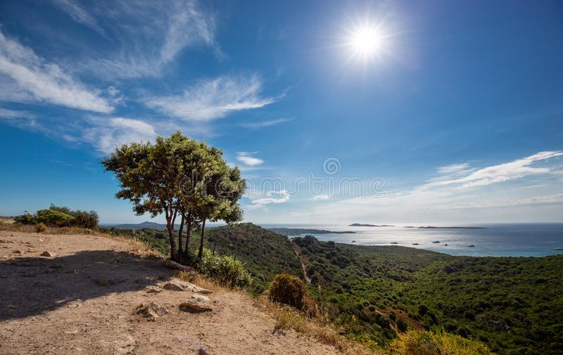 Mediterranean landscape with green vegetation and tree, sun, blue sky and calm sea and coast of Sicily - Italian region in south royalty free stock photography
