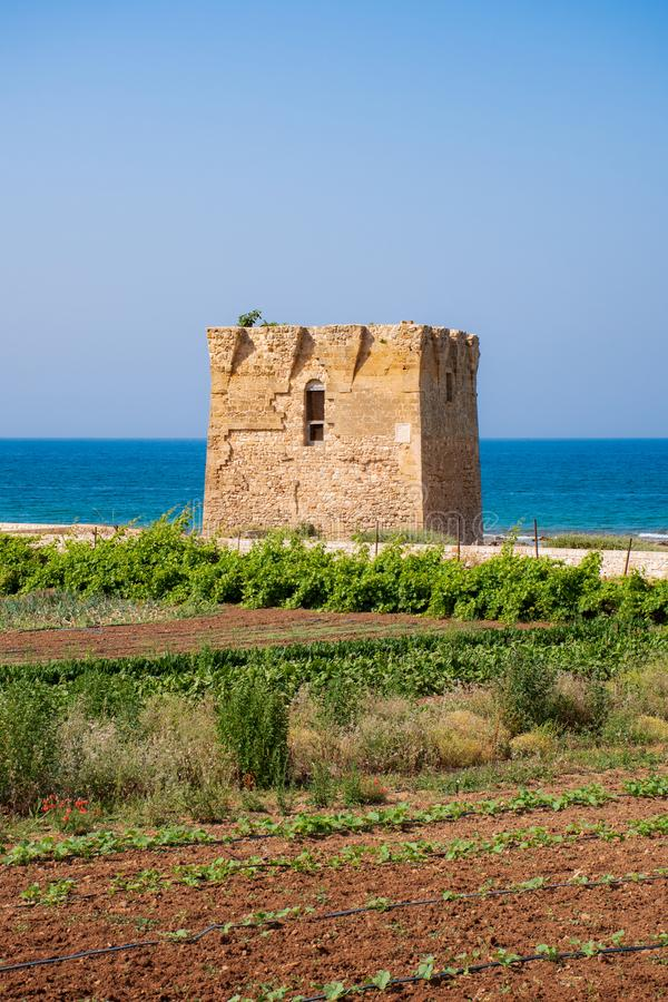Mediterranean landscape, Puglia. Baroque watchtower, beautiful old tower in San Vito, Polignano a Mare, Bari, Puglia, Italy with with blue sea, beach and stock photos