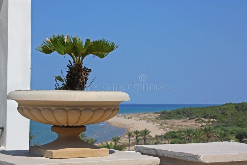 Download Mediterranean resort stock image. Image of plant, beautiful - 23544643