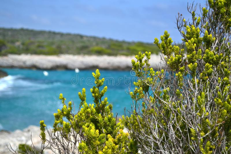 Mediterranean sea,Minorca `s sea stock images