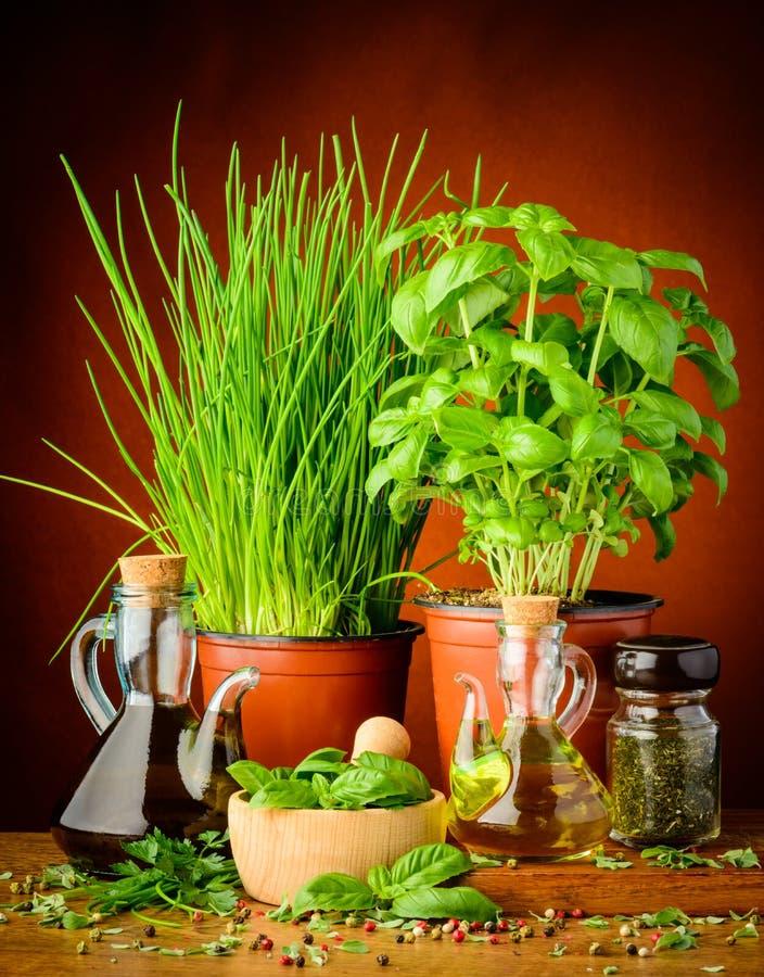 Mediterranean seasoning stock images