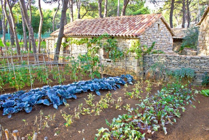 Mediterranean stone village garden vegetables. View stock photography