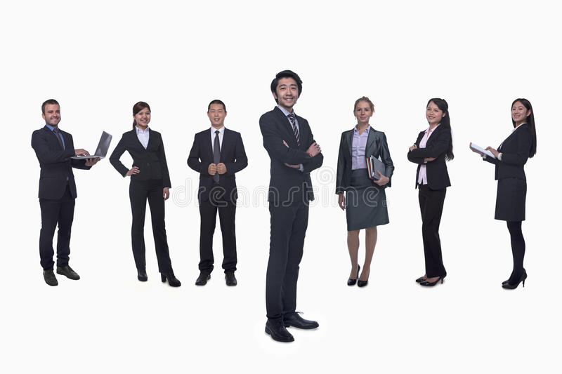 Medium group of business people in a row, portrait, full length, studio shot royalty free stock images