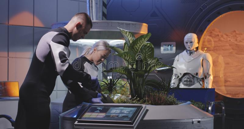 Biologists and robot planting seedlings on a Mars base royalty free stock image