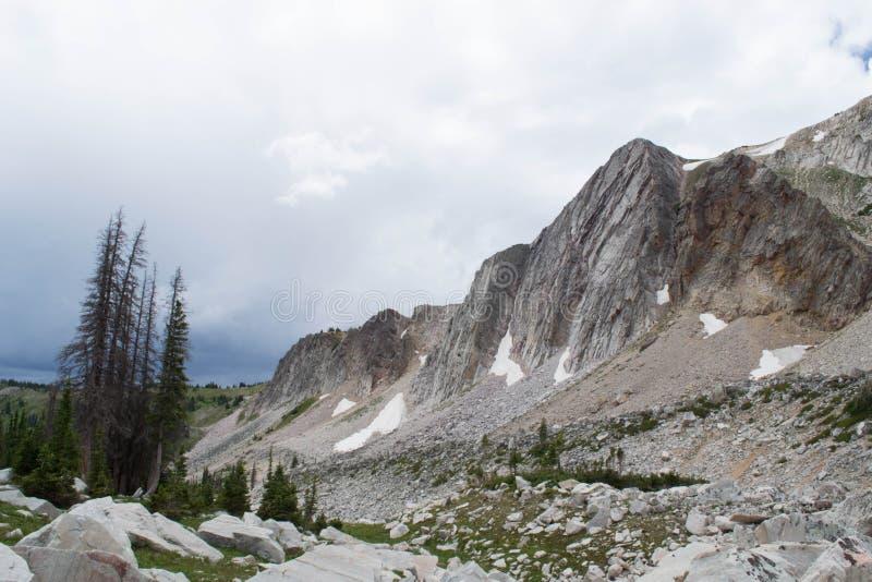 Medizin-Bogen-Spitze, Snowy-Strecken-Berge, Laramie Wyoming lizenzfreie stockfotografie