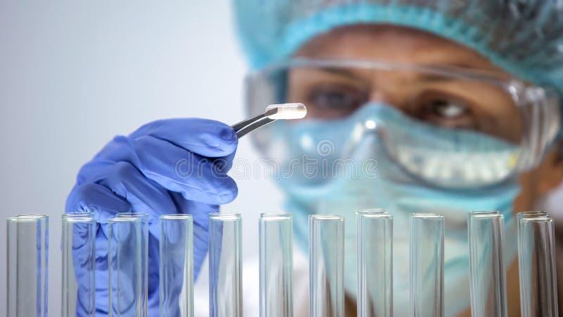 Medizinische Forscherholdingkapsel, Pharmaindustrie, Biochemie stockbilder