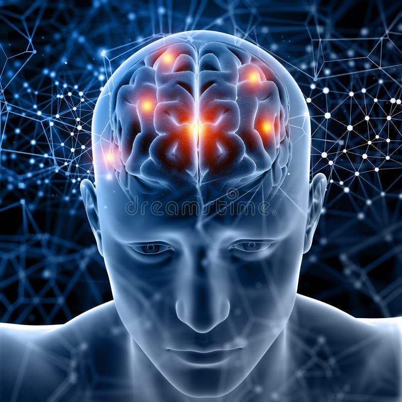 medizinische Zahl 3D mit dem Gehirn hervorgehoben lizenzfreie abbildung