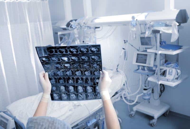 Medizinischer Spezialist überprüft CT-Scan im Bezirk lizenzfreie stockfotografie