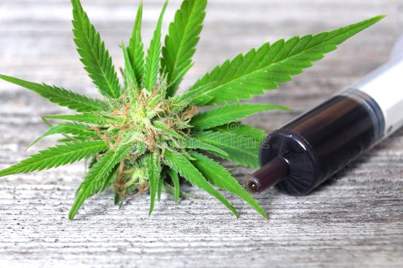 Medizinisches Marihuana- und Haschöl stockbilder