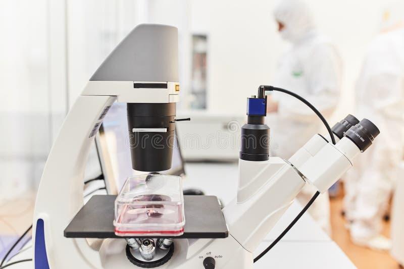Medizinisches Mikroskop mit der Probe stockfotos