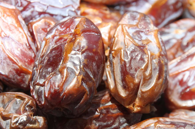 Medjool dates. Have been called the king of dates - fresh dates, delicious fruits of date palm trees stock photos