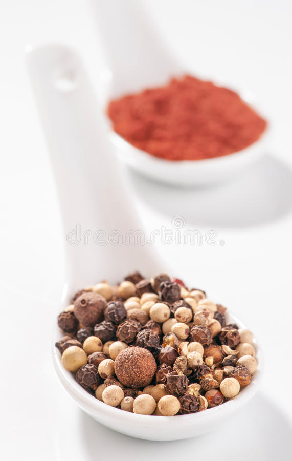 Medley of peppercorns. On white porcelain spoon stock photography
