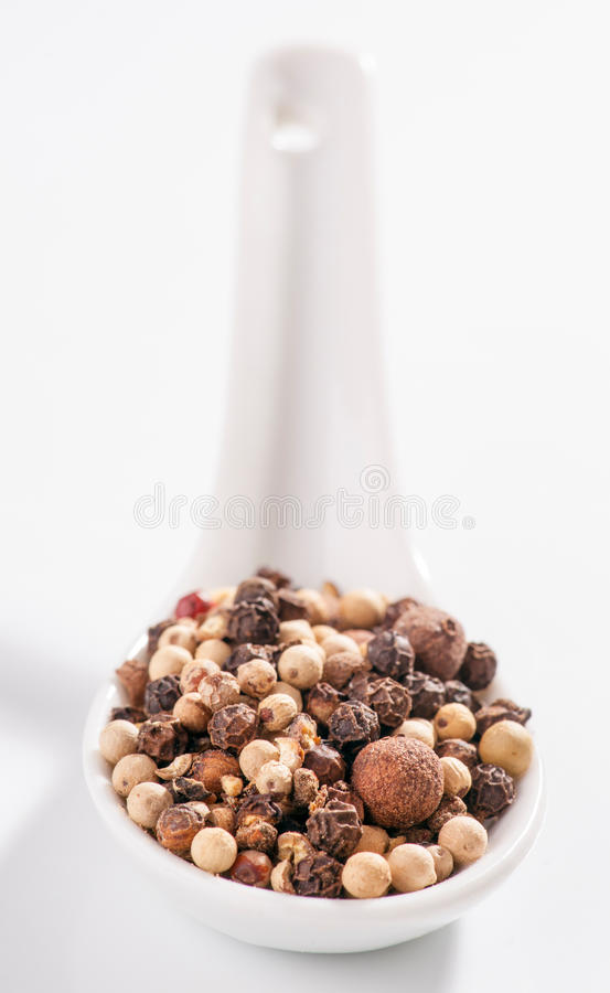 Medley of peppercorns. On white porcelain spoon royalty free stock photography