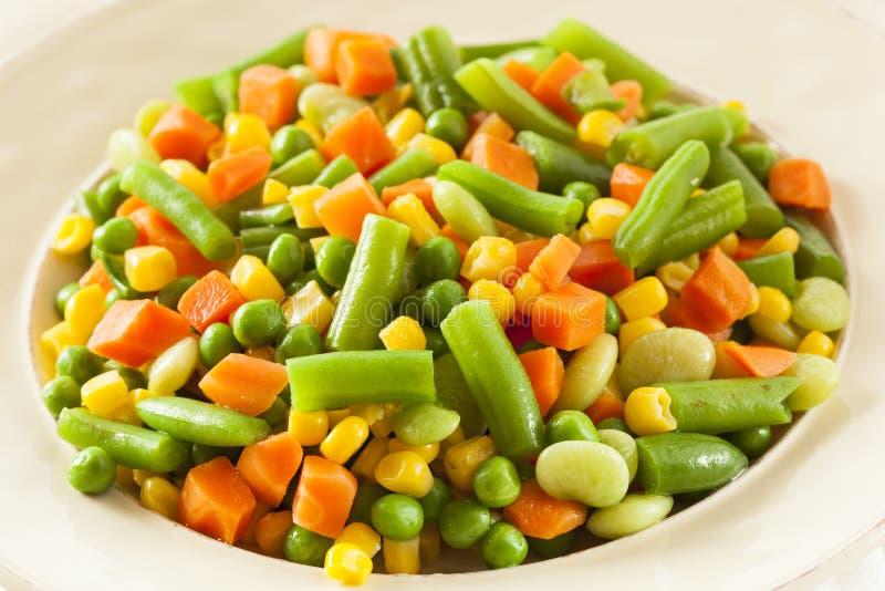Medly végétal organique cuit à la vapeur photographie stock