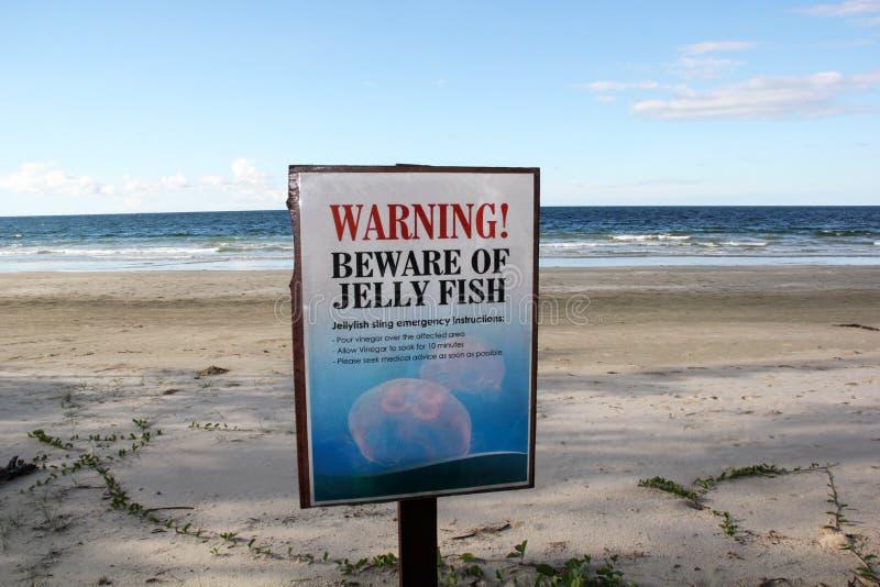 Medusa Sting Warning Sign na praia de Bornéu imagem de stock