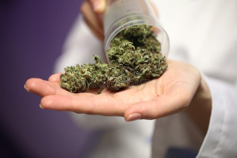 Medyczna marihuana w ręce lekarka marihuany alternatywna medycyna zdjęcie royalty free