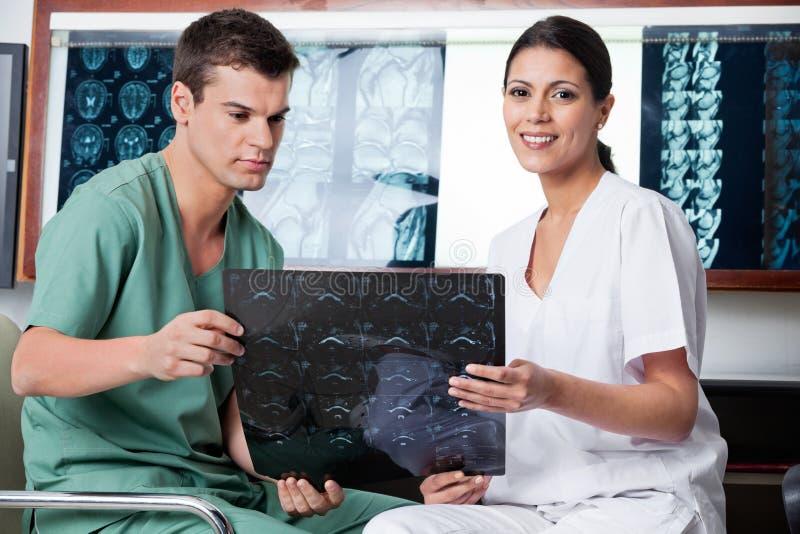 Medyczni technicy Analizuje MRI promieniowanie rentgenowskie zdjęcia royalty free