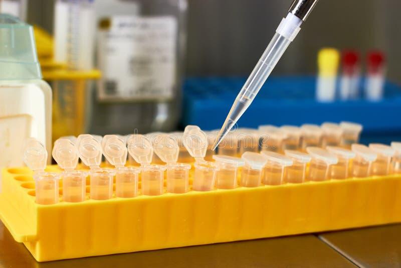 Medyczny biotechnologii badanie obrazy royalty free