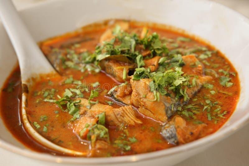 Meen Kuzhambu, curry piccante del pesce fotografia stock libera da diritti
