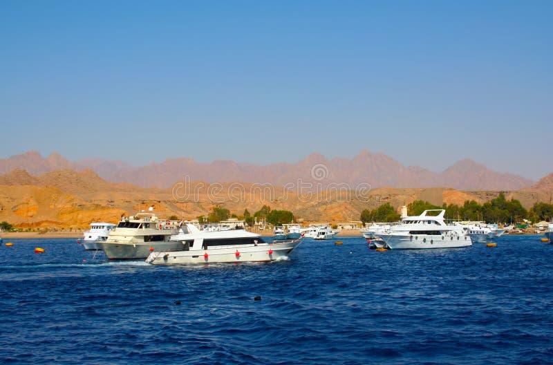 Meer in Ägypten stockbilder