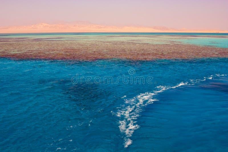 Meer in Ägypten. Bezaubern Sie ein Ale der Scheich lizenzfreies stockfoto