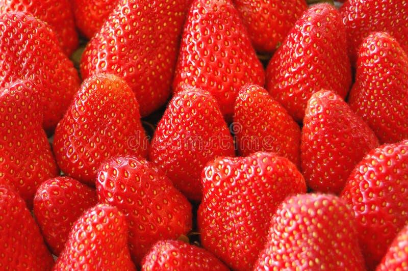Meer aardbeien stock foto