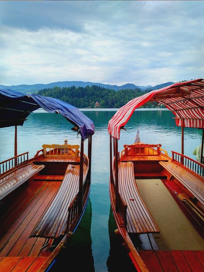 Meer Afgetapt Slovenië - traditionele houten boten op het water stock foto