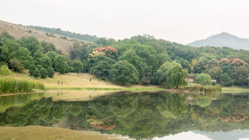 Meer Biwa royalty-vrije stock foto's