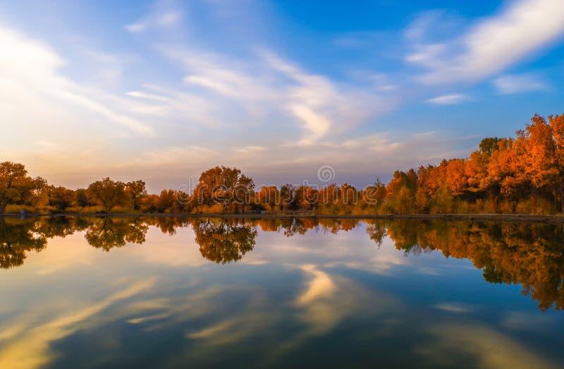 Meer in de herfst stock foto