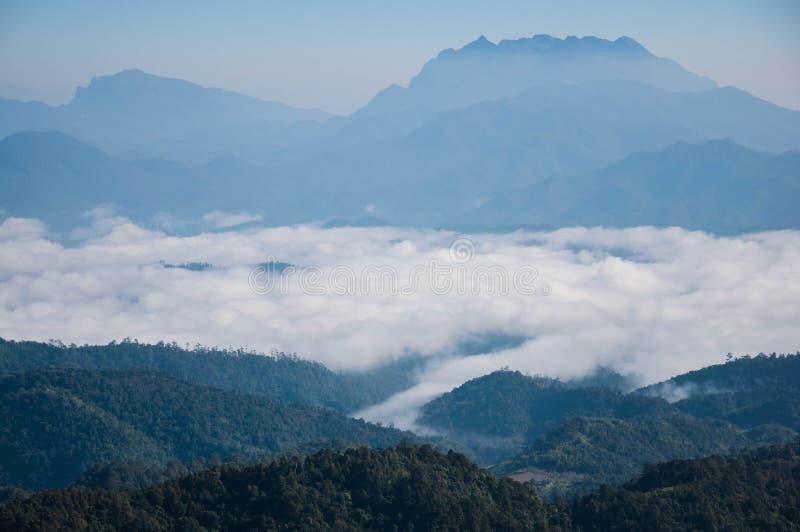 Meer des Nebels stockfotos