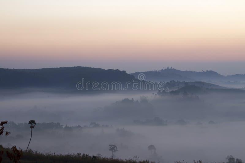 Meer des Nebels stockfoto