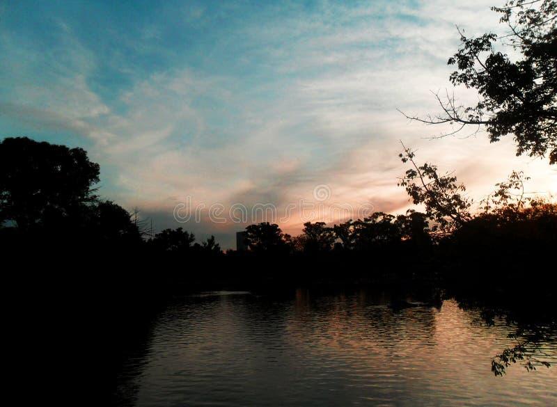 Meer door bomen en struiken in volledige de zomerzonsondergang wordt omringd in de stad die royalty-vrije stock afbeelding