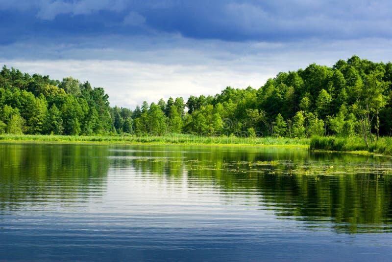 Meer en bos. royalty-vrije stock afbeelding