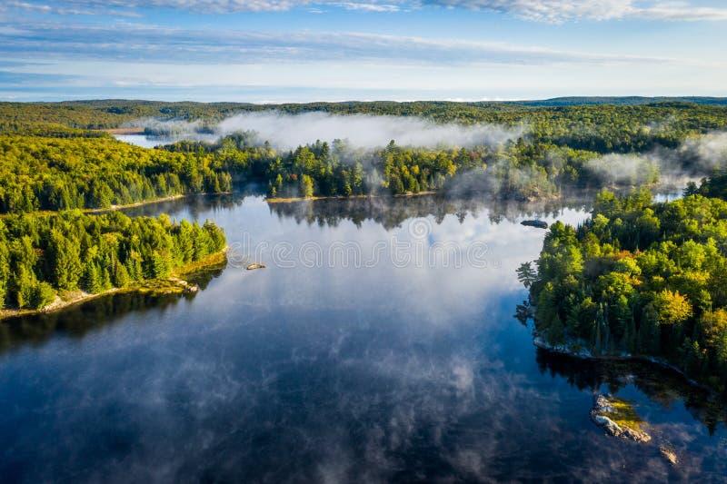 Meer en bos op een nevelige ochtend royalty-vrije stock foto's