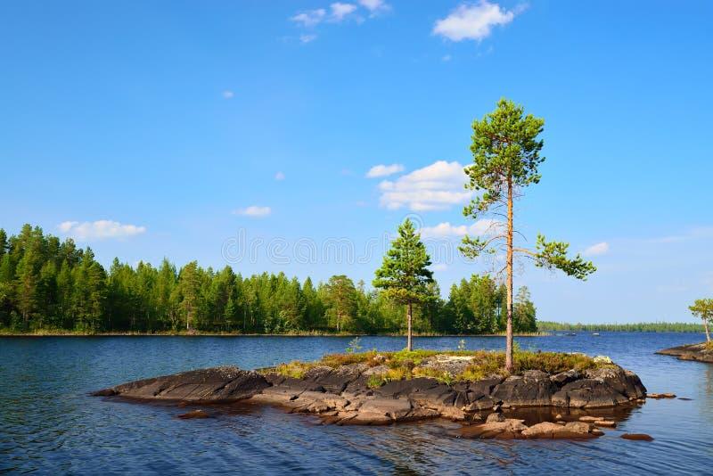 Meer Engozero. Noord-Karelië, Rusland stock fotografie