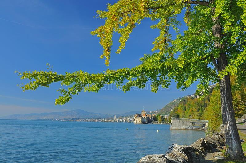 Meer Genève en Montreux royalty-vrije stock afbeeldingen