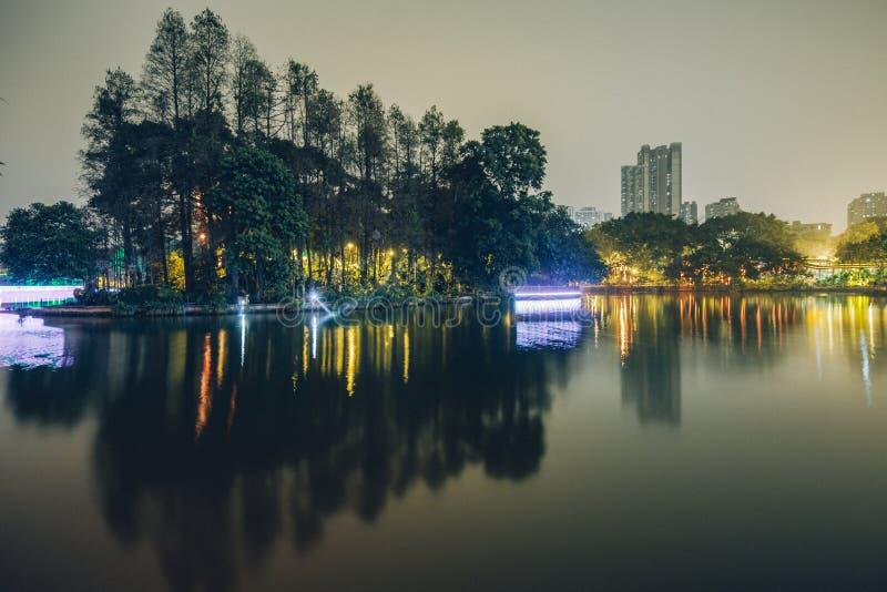 meer in het park bij nacht royalty-vrije stock afbeelding